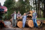 Family project milling wood for their new home addition in Camino, CA